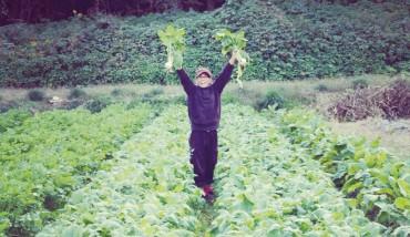 10590027野菜収穫