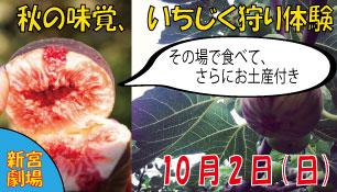 1002.ichijiku